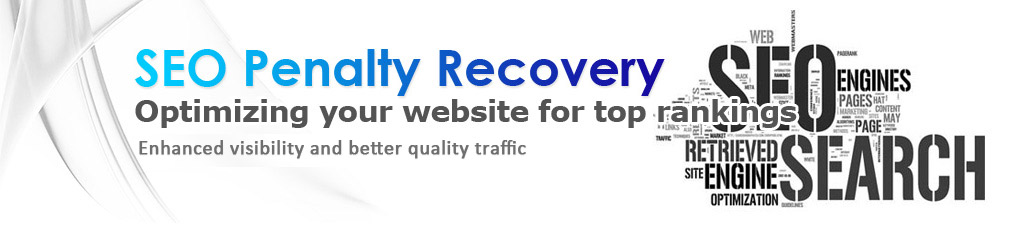 seo penalty recovery optimiation your website for rankings enhanced visibility and better quality traffic   web seo engines retrived site engine optimization search
